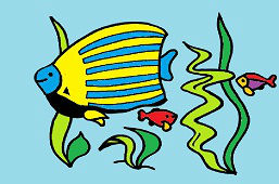 Rodzina ryb