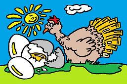 Kurczak i jaja