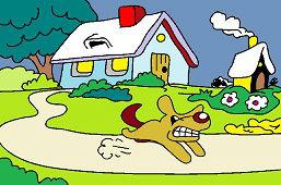 Wściekły pies