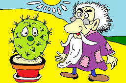 Dziadek i kaktus