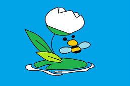 Lilia wodna i pszczoła