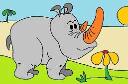 Nosorożec zwyczajny