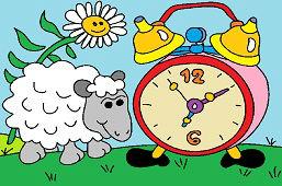 Owca i wielki budzik