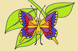 Motyl nieustalona