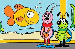 Chrząszcze i akwarium
