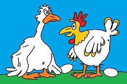 Gęś i kura