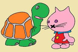 Żółw i kotek