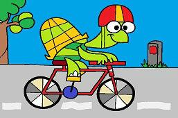 Żółw Sofia