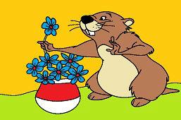 Bóbr i pachnące kwiaty