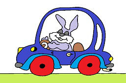 Królik w samochodzie