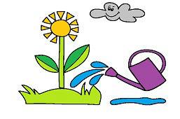 Kwiat w ogrodzie