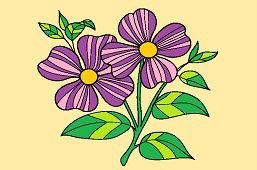 Purpurowe kwiaty