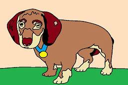 Pies myśliwski