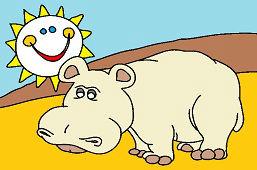Hipopotam i słońce