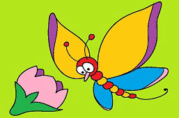 Motyl Marek