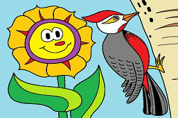 Słonecznik i dzięcioł