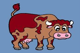 Brązowa krowa
