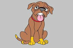 Posłuszny pies
