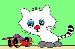 Kotek i samochodzik