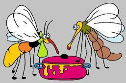 Komary kochają słodkie