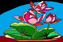 Kwiaty w misce