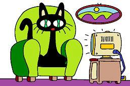 Kot przed telewizorem