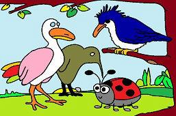 Biedronka i ptaki