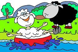 Owce na jeziorze