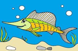 Miecznik ryba