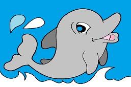 Młody delfin