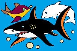 Ryby w morzu