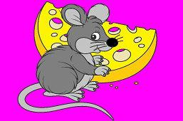 Mysz ze smacznym serem