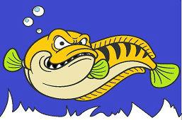 Ryba drapieżna