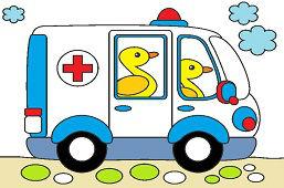 Ambulans dla zwierząt