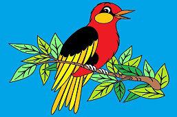 Śpiewający ptaszek