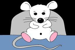 Dom myszy