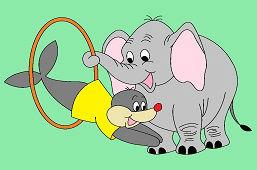 Słoń i foka w cyrku